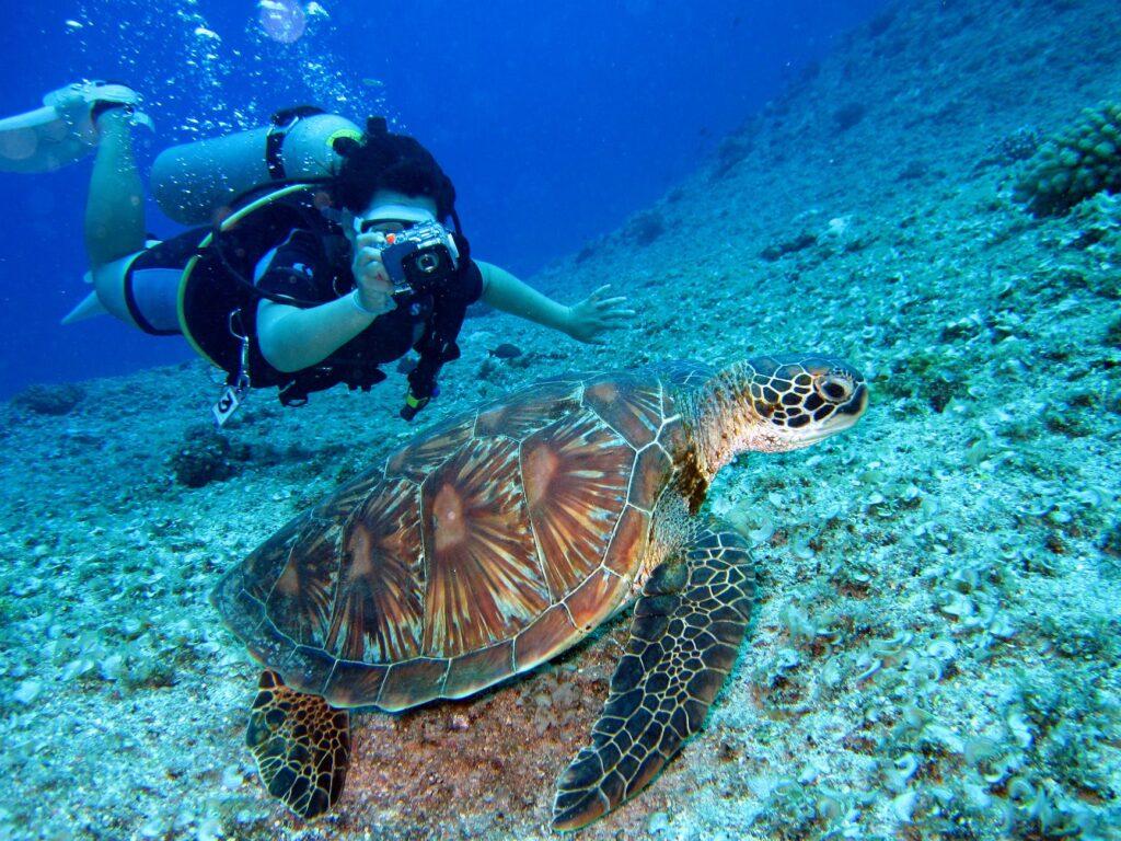 Dykker med dykkerkamera